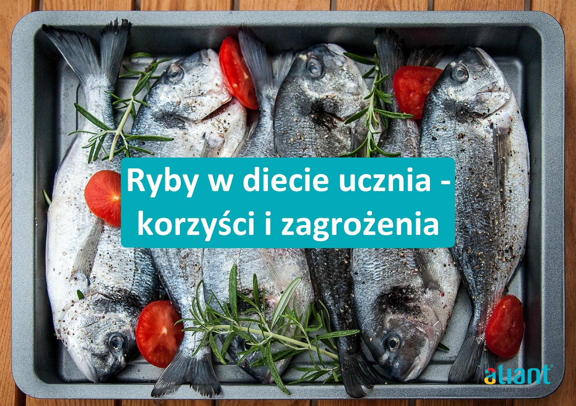 Ryby w diecie ucznia – korzyści i zagrożenia